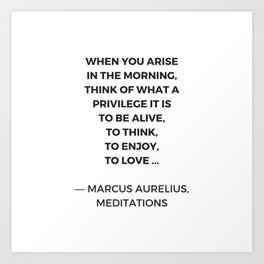 Stoic Inspiration Quotes - Marcus Aurelius Meditations - What a privilege it is to be alive Art Print