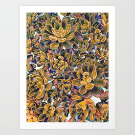 Floral tribute [honey] Art Print