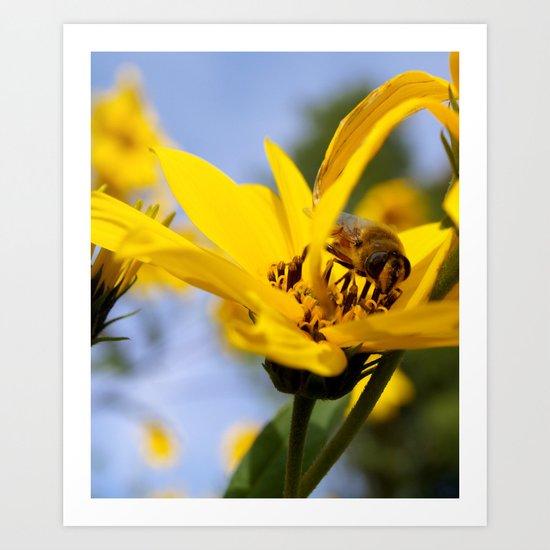 Yellow Flower and Bee Art Print
