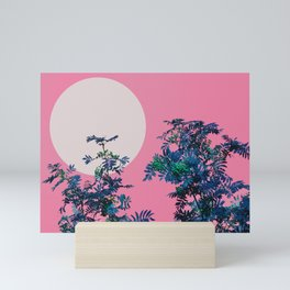 Pink sky and rowan tree Mini Art Print