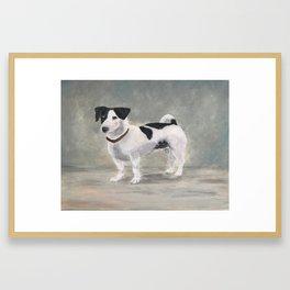 Mikko, Jack Russell Terrier Framed Art Print
