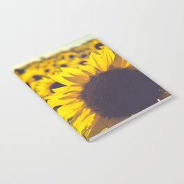 Summer Sunflower Love Notebook