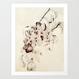 Pear tree Art Print