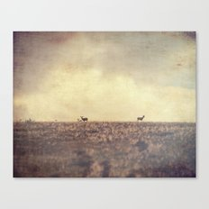 Being Watched Canvas Print