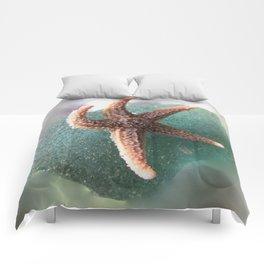 Starfish on Ocean Blue Sea Glass Comforters