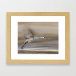 Wings of the Sandhill Crane Framed Art Print