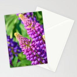 Spring Garden Flowers Stationery Cards