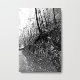 Forest black and white 9 Metal Print