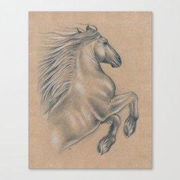 Powerful Equine Canvas Print