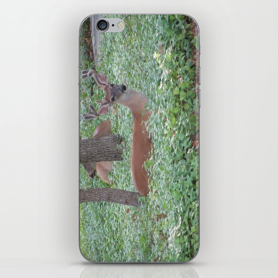 Here's Looking at You! iPhone & iPod Skin