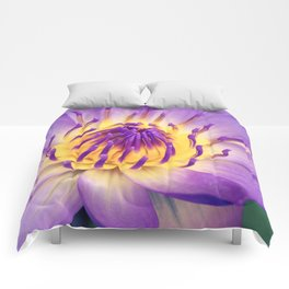 Ao Lani Heavenly Light Comforters