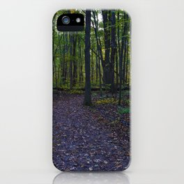 Boardwalk through the forest in southern Ontario, CA iPhone Case