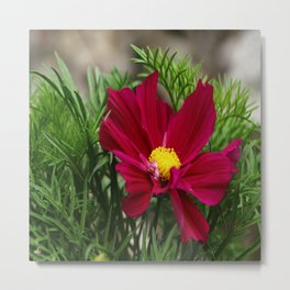 Lady In Red In The Greens Metal Print