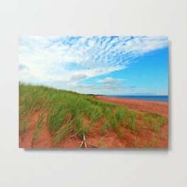 Red Dunes and Beach Grass Metal Print