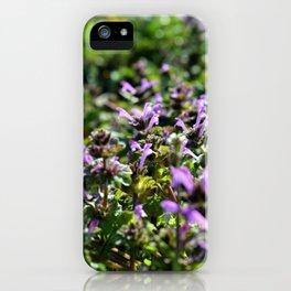 Purple Ground iPhone Case