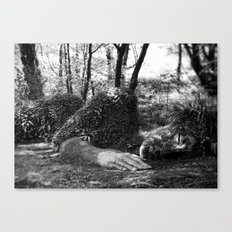 Heligan giant in monochrome Canvas Print