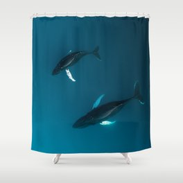 Mother and Child – Humpback Whales in the Ocean – Minimalist Wildlife Photography Shower Curtain