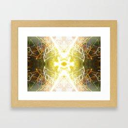 Kalidescope Kandy 1.7 Framed Art Print