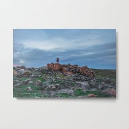 At the Top of the World: 3 Metal Print