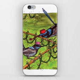 Christmas Wrens iPhone Skin