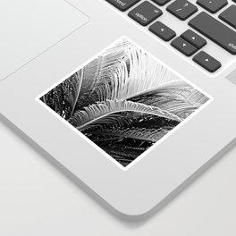 Palms monochrome II Sticker