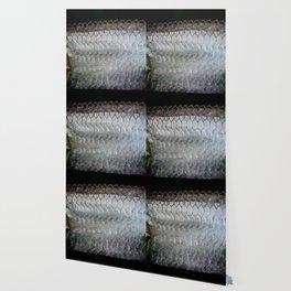 Tarpon Scales Wallpaper