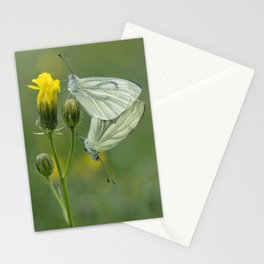 Butterfly Love Stationery Cards