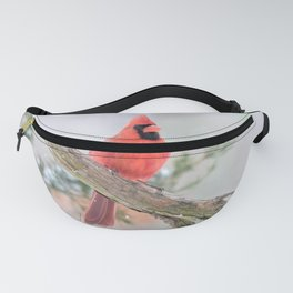 """Say What?"" (Northern Cardinal) Fanny Pack"