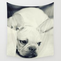 french Wall Tapestries featuring French Bulldog by Falko Follert Art-FF77