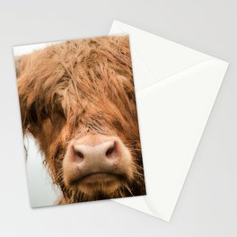 Highland Cow, Bad Hair Day Stationery Cards