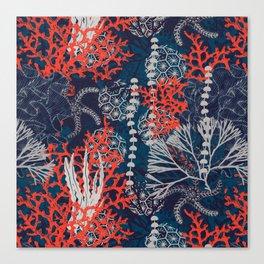 Corals and Starfish Canvas Print