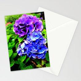 Hydrangeas Blue Purple Stationery Cards