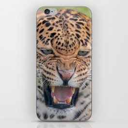 Leopard Fierce iPhone Skin