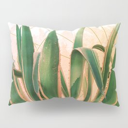 Cactus with geometric Pillow Sham