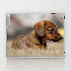 Bridgit 7 Laptop & iPad Skin