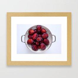 Some violet plums in a white glazed colander. Framed Art Print