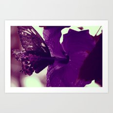 Purple Nectar Art Print