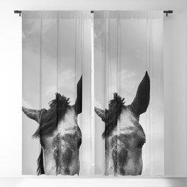 Horse Head Blackout Curtain