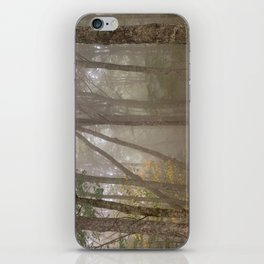 Misty Spruce Knob Forest iPhone Skin