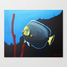 wondering Fish  Canvas Print