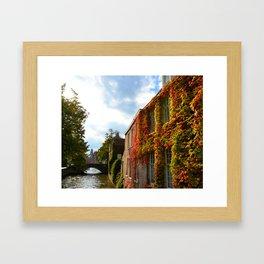 Klimop huis Framed Art Print