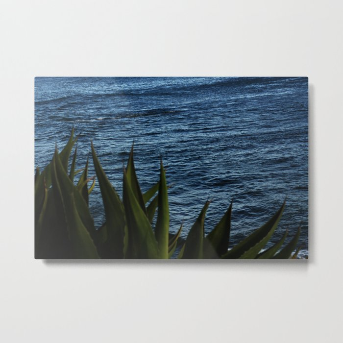 Seascape with cactus Metal Print