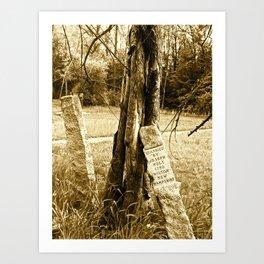 Tyrone Sunken Gardens Art Print