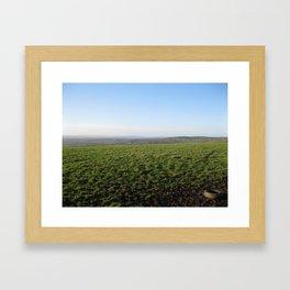 Wind Daze Framed Art Print
