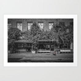 Ground Photographer Art Print