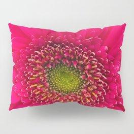 Neon Pink Daisy Pillow Sham