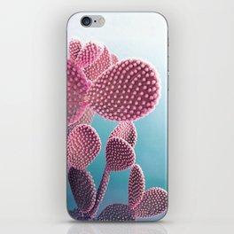 Candy Cactus iPhone Skin