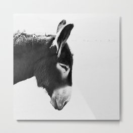 Everybody Loves Larry Metal Print
