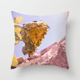 Hanging Her Head - California Coastal Sunflower Throw Pillow