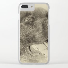 Lab with loving Eyes Clear iPhone Case